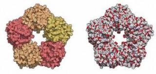 Inflammation genes malaysia